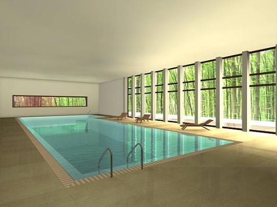 piscine-interieur-maison
