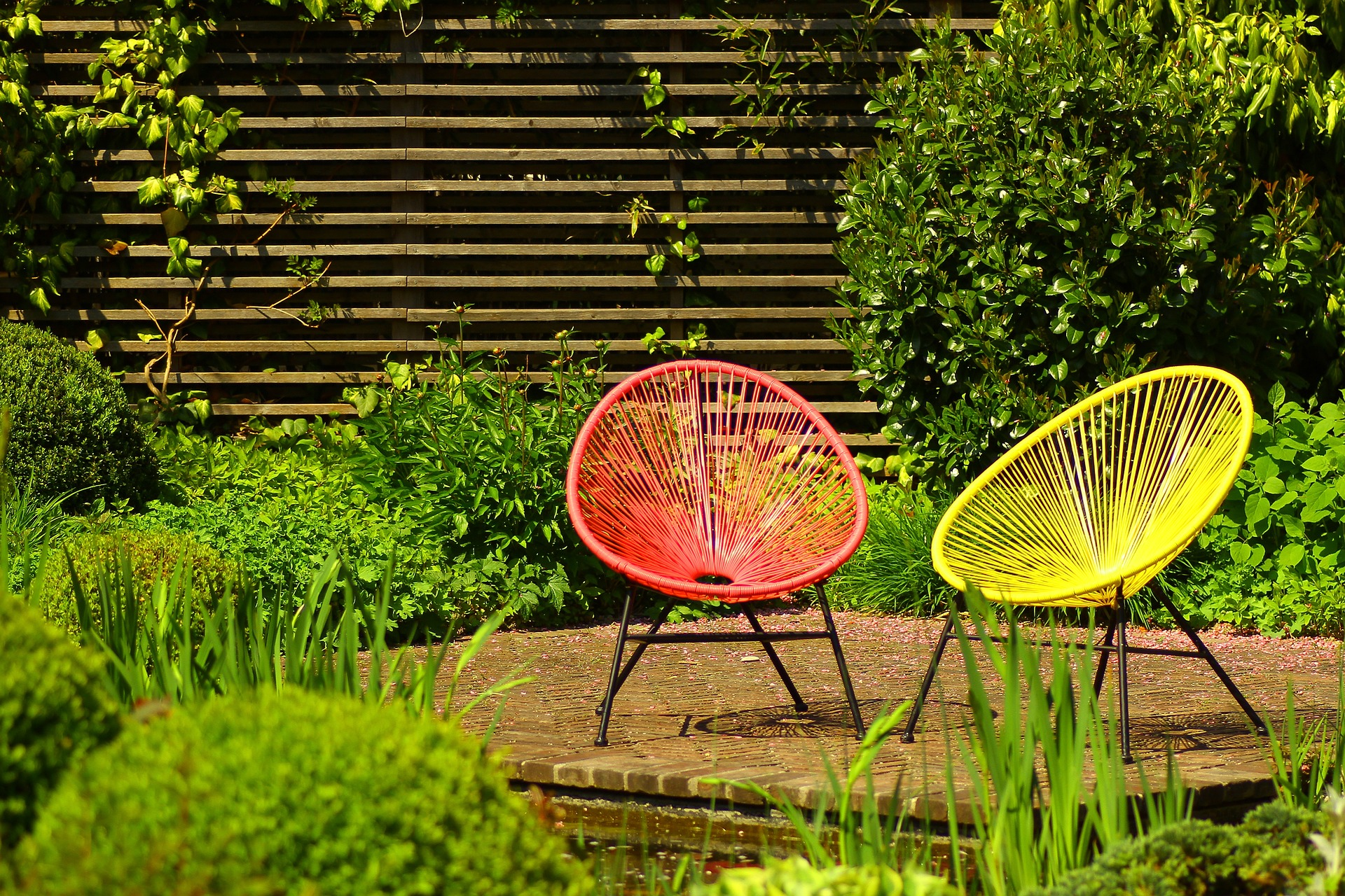 Plantes Pour Jardin Contemporain comment aménager un jardin moderne ? - construction