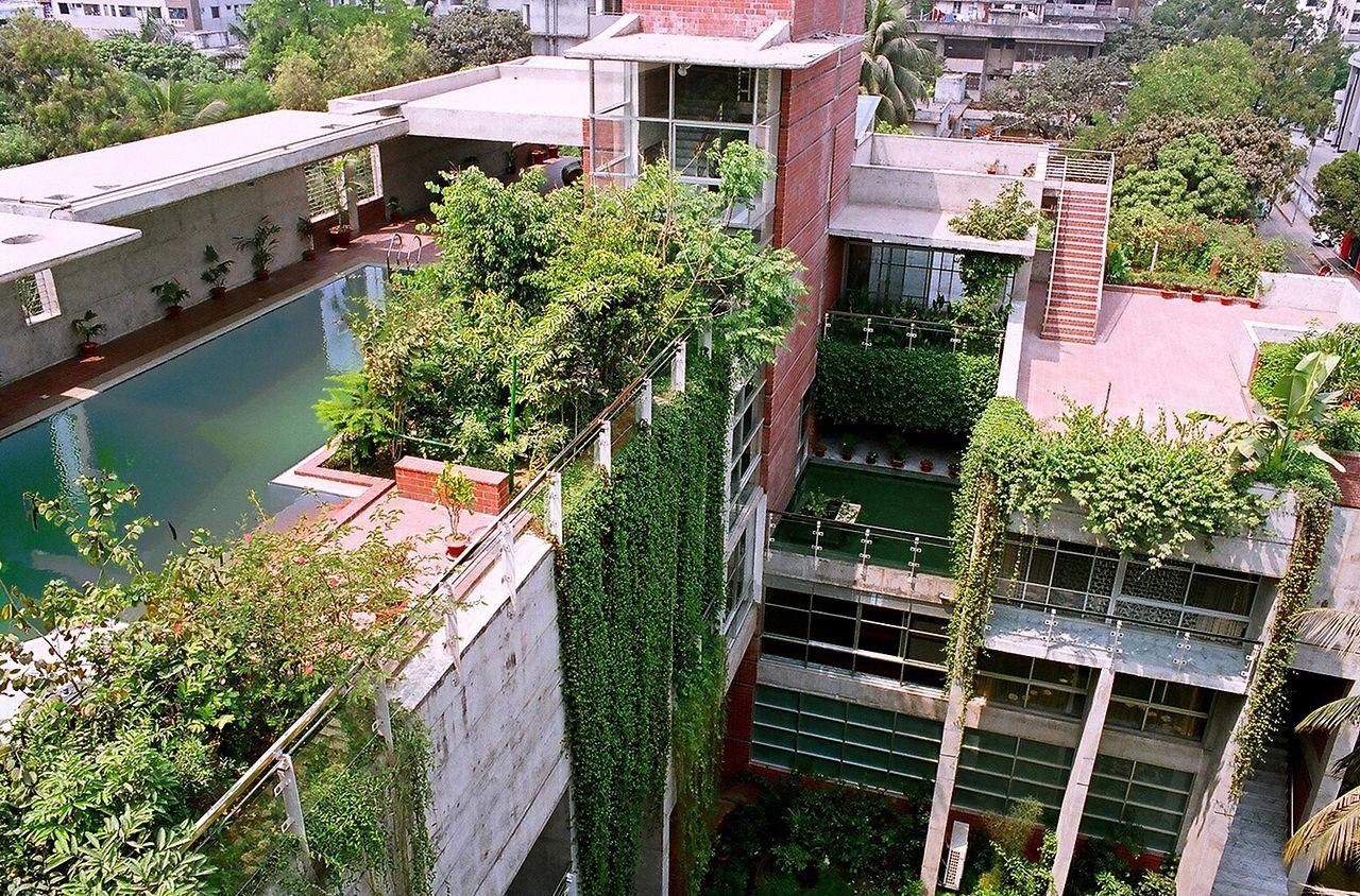 toitures et murs végétalisés dans une aire urbaine